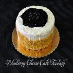 Blueberry Cheesecake Fantasy